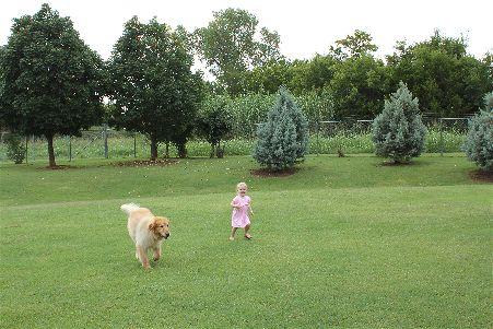 large dog and girl